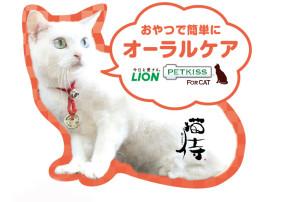 先着4000名に招き猫ストラップをプレゼント!『猫侍』×イオンペット×ライオンのコラボキャンペーンが決定